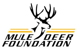 MDF Corporate Logo color 2
